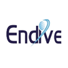 Endive Software - Top App Development Companies